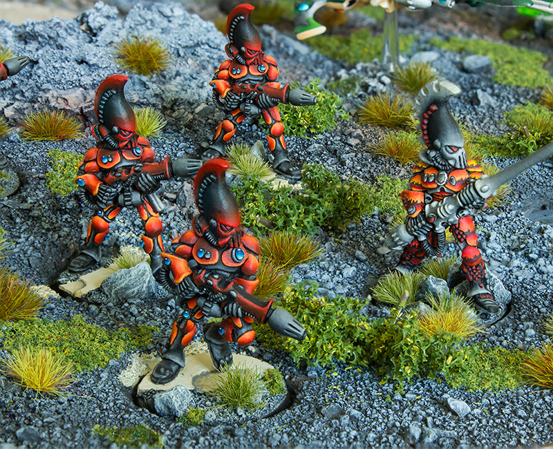 Biel-Tan - Armies on Parade [image 7]